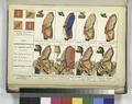 France, 1764, (3) (NYPL b14896507-1236530).tiff
