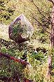 France Loir-et-Cher Festival jardins Chaumont-sur-Loire 2003 Cabaret des oiseaux.jpg