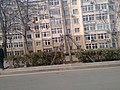 Fushan Shangquan, Qingdao, Shandong, China - panoramio (59).jpg