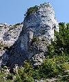 Góra Zborów DK15.jpg
