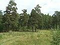 G. Miass, Chelyabinskaya oblast', Russia - panoramio (37).jpg