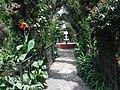 Garden of The Templo de Jesús Calyecac.JPG
