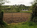 Gate and field, Chycowling - geograph.org.uk - 1288832.jpg