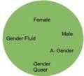 Genderfluid.png