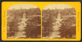 General View, Public Garden, Boston, from Robert N. Dennis collection of stereoscopic views.png