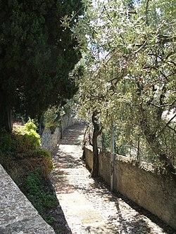 Sant'Ilario (alture di Nervi): una creuza de ma