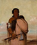 George Catlin - Ah'-sho-cole, Rotten Foot, a Noted Warrior - 1985.66.60 - Smithsonian American Art Museum.jpg