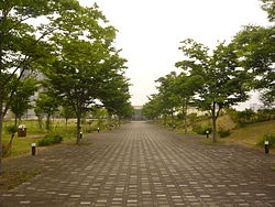 Gifu College of Nursing 03.JPG