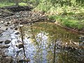 Glen Abbey Trails Creek - panoramio.jpg