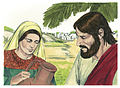 Gospel of John Chapter 4-6 (Bible Illustrations by Sweet Media).jpg