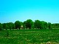 Governor Nelson State Park - panoramio.jpg