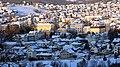 Grad Gornji Milanovac (1).jpg