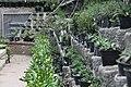 "Gradina Botanica ""Vasile Fati"" (4656624579).jpg"