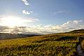 Gran Sabana paisaje ppal.jpg