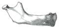 Gray182.png
