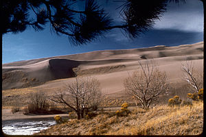 Great Sand Dunes National Park and Preserve GRSA3829.jpg