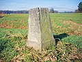 Grenzstein 98 KS KP.jpg