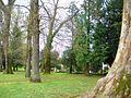 Guernica - Parque de los Pueblos de Europa 02.jpg