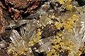 Hémimorphite et mimétite sur limonite et hématite (Mexique) 3.jpg