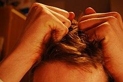 Estrés - Wikipedia, la enciclopedia libre