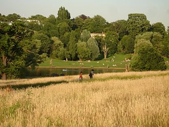 The Island of Ham - Hampstead Heath