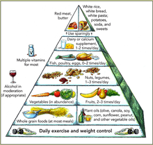 Harvard food pyramid.png