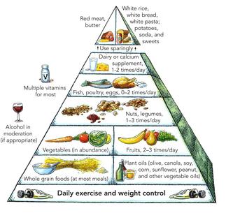 Diet Food Brain Health White Spots Mri