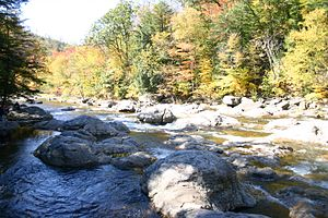 Sullivan County, Pennsylvania - The Haystacks in Loyalsock Creek