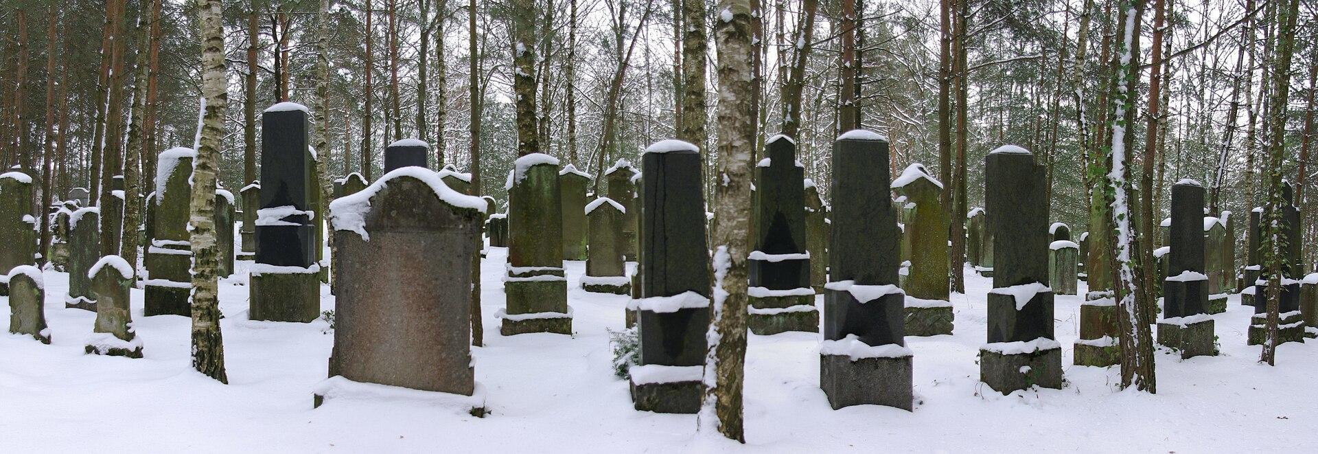 Hemhofen Zeckern Jüdischer Friedhof 003.JPG