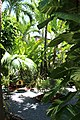 Hemingway House Key West, Florida United States - panoramio.jpg