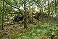 High Cademan, Cademan Wood, Charnwood Forest - geograph.org.uk - 1467729.jpg