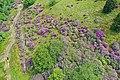 Highlands Loch Lochy Aerial 3.jpg