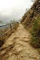 Hiking Diamond Head (4602433779).jpg