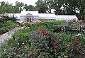 Hillwood Gardens in July (19181110583).jpg