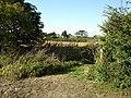 Hinxworth Church over fields nearby. - geograph.org.uk - 45641.jpg