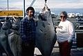 Homer Alaska (50042620453).jpg