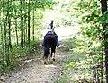 Hope trail ride (5861204621).jpg