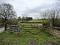 Hurst Wood Meadow, Hollow Lane - geograph.org.uk - 1768703.jpg