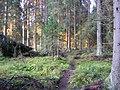 Hyvinkää, Finland - panoramio.jpg