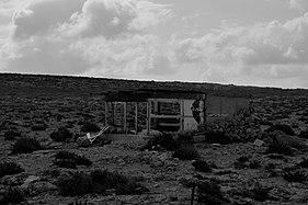Il-Majjistral hunting shed.jpg
