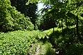 Imó-kő irányába - panoramio.jpg