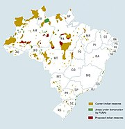 Indigenous brazil.jpg