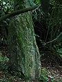 Inscribed Stone - geograph.org.uk - 392032.jpg