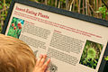 Insect-Eating Plants Sign.jpg