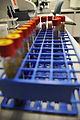 Inside the lab with medical 150319-F-TQ704-052.jpg
