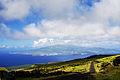 Interior da ilha do Pico, a ilha do Faial do outro lado do mar, terra verde, Açores, Portugal.JPG