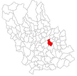 Vị trí của Iordacheanu