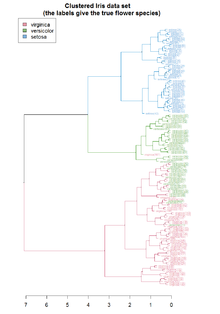 Hierarchical clustering dendrogram of the Iris dataset