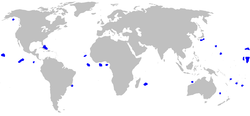 world map with blue areas scattered through the Atlantic, Indian, and Pacific Oceans, excluding the polar regions