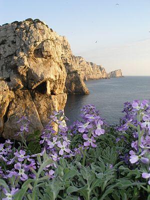 Conservatoria delle Coste - Image: Isola Piana a Primavera